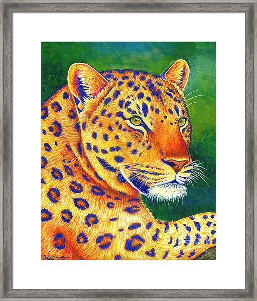 Colorful Leopard Portrait Framed Print