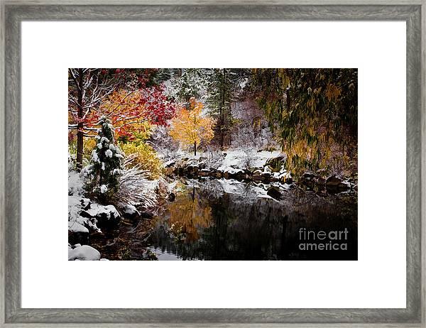 Colorful Pond Framed Print