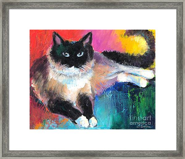 Colorful Ragdoll Cat Painting Framed Print