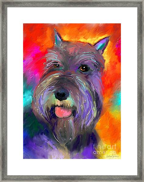 Colorful Schnauzer Dog Portrait Print Framed Print
