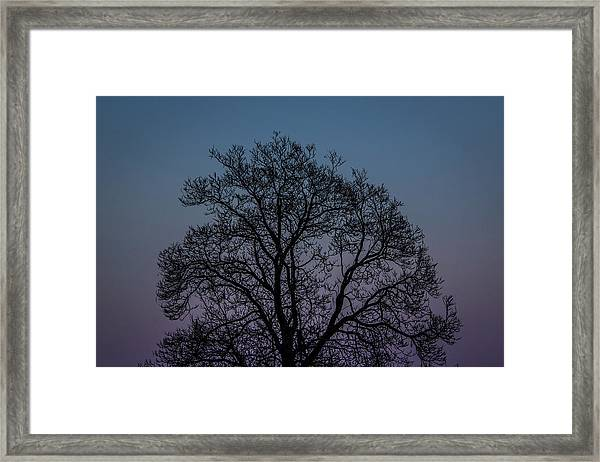 Colorful Subtle Silhouette Framed Print
