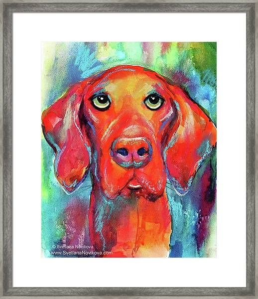Colorful Vista Dog Watercolor And Mixed Framed Print