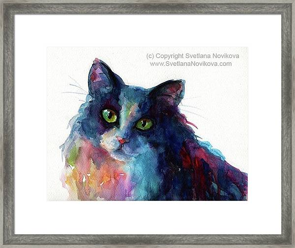 Colorful Watercolor Cat By Svetlana Framed Print