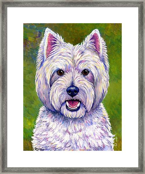 Colorful West Highland White Terrier Dog Framed Print