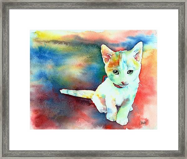 Colorfull Kitty Framed Print