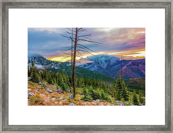 Colorfull Morning Framed Print