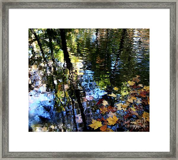 Colors Are Deeds And Sufferings Of Light Framed Print