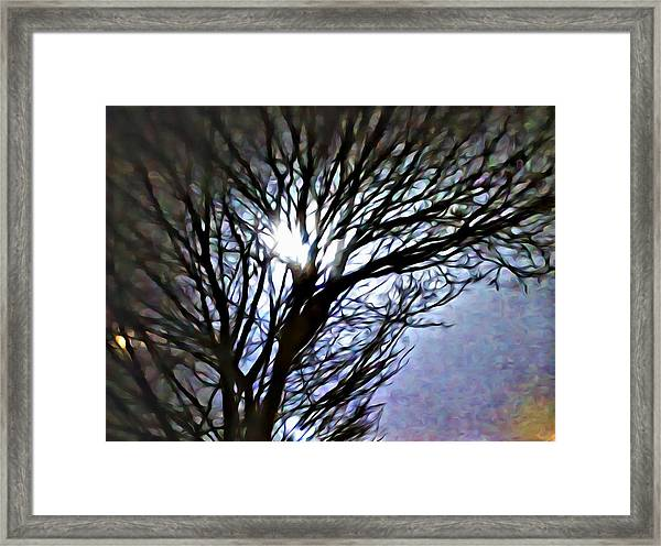 Colors In The Fog Framed Print