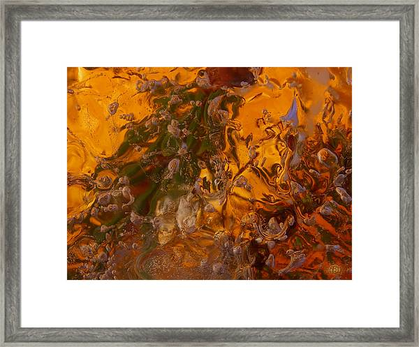 Colors Of Nature 2 Framed Print