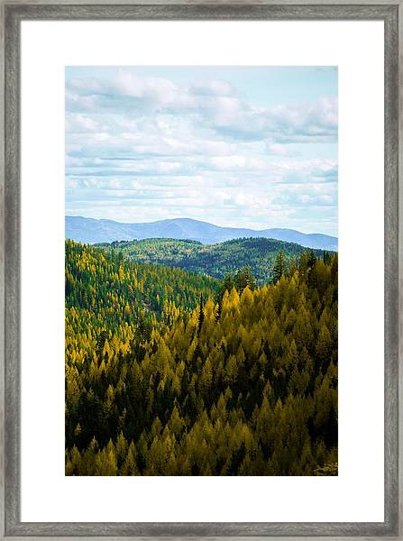 Colors Of Sherman's Pass Framed Print