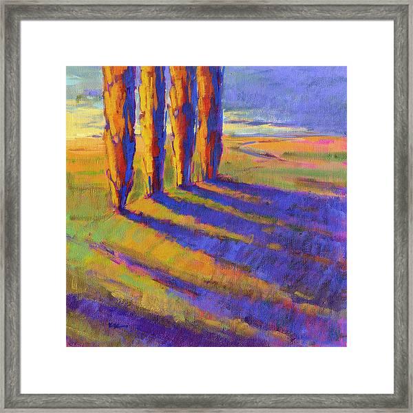 Colors Of Summer 5 Framed Print