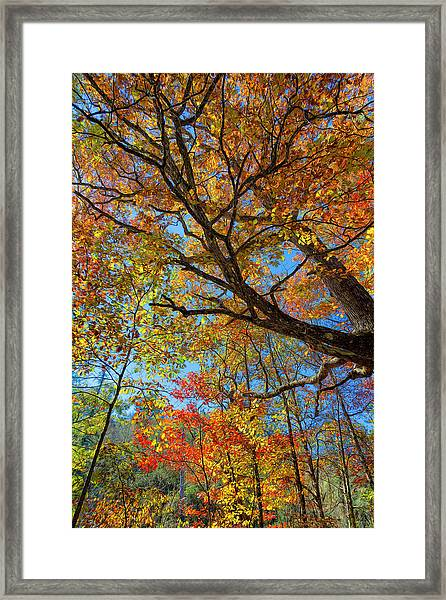 Colors On High Framed Print