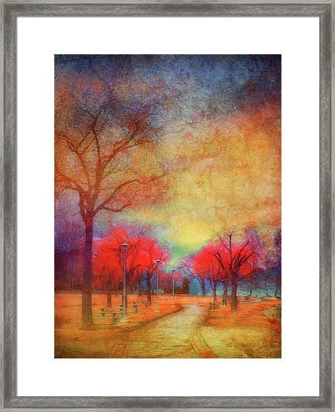 Colour Burst Framed Print