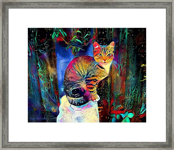Colourful Calico Framed Print