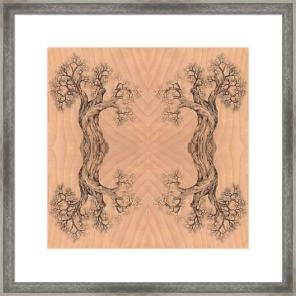 Come Together Tree 38 Hybrid 1  Framed Print