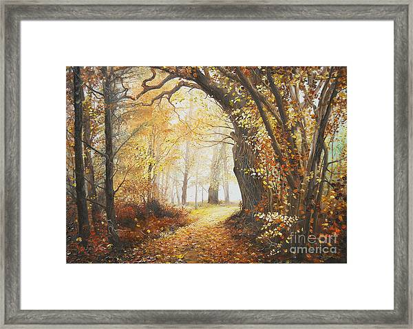 Come With Me Framed Print