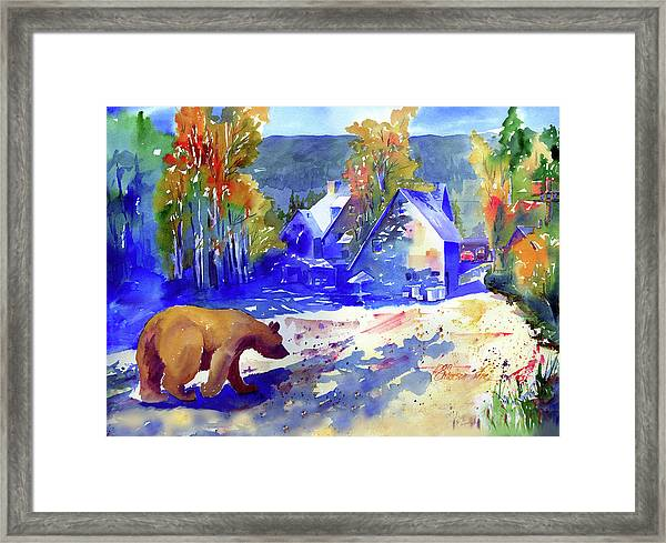Coming For Dinner At Rainbow Lodge Framed Print