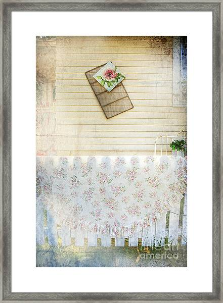 Coming Up Roses Framed Print