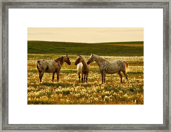 The Conference Framed Print