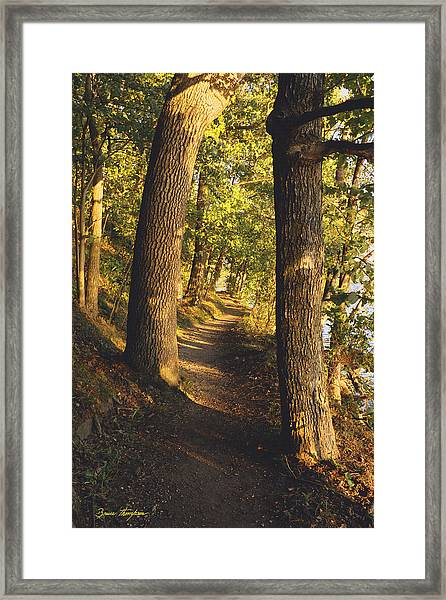 Conference Point Path - Lake Geneva Wisconsin Framed Print