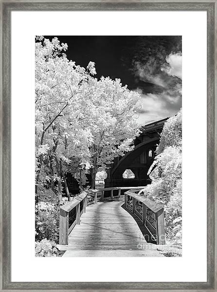Congaree River Boardwalk Framed Print