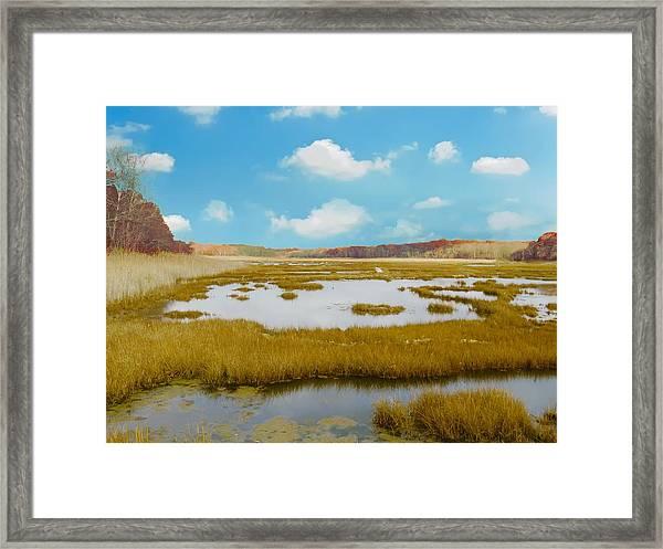 Connecticut Salt Water Marsh Framed Print