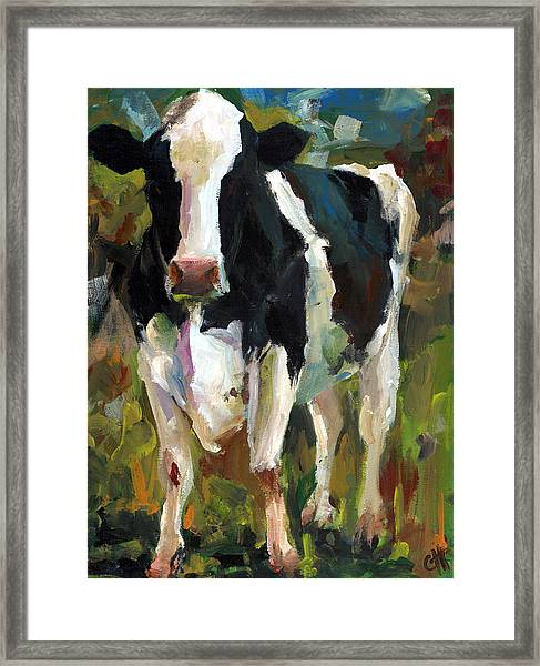 Connie The Cow Framed Print by Cari Humphry