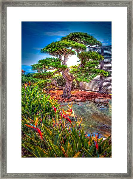 Consciousness Waves And Then Matters Framed Print