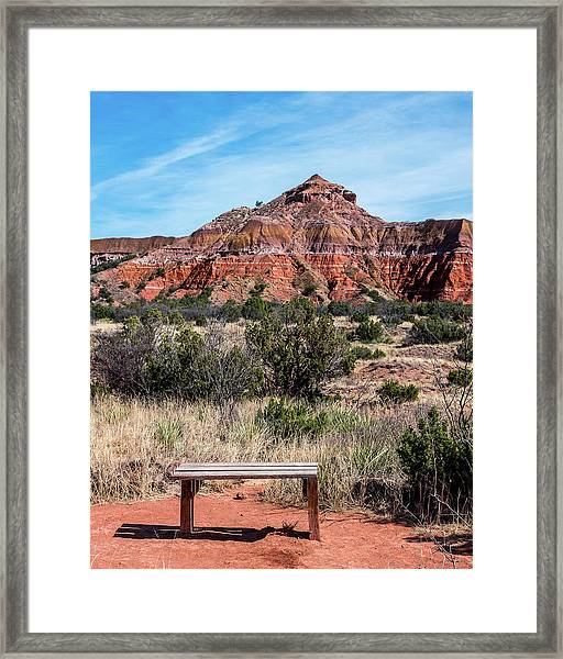 Contemplation Bench Framed Print