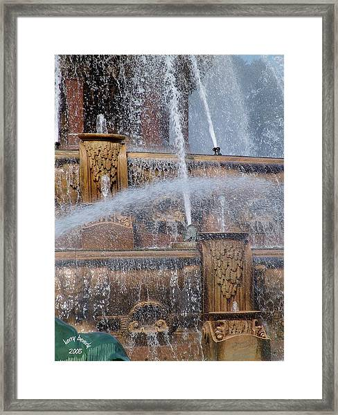 Coolth Framed Print