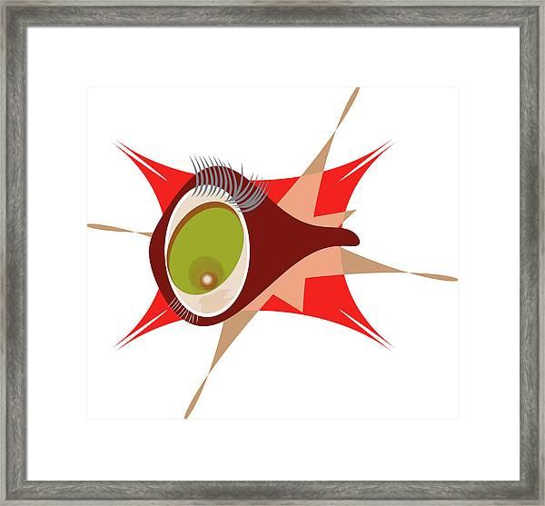 Copepod Framed Print