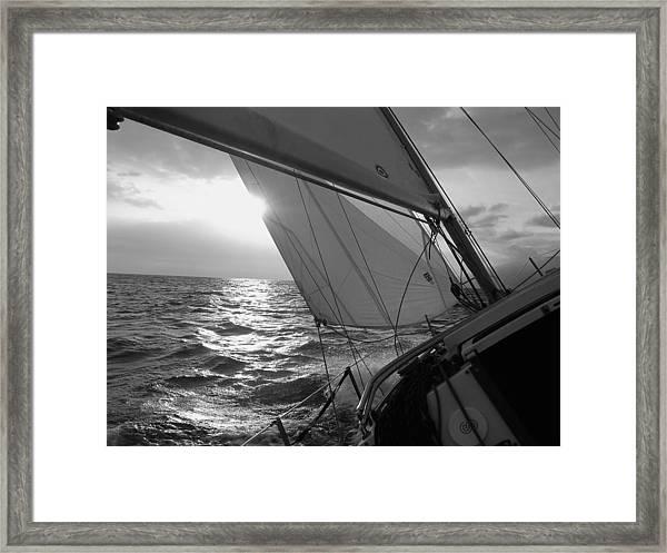 Coquette Sailing Framed Print