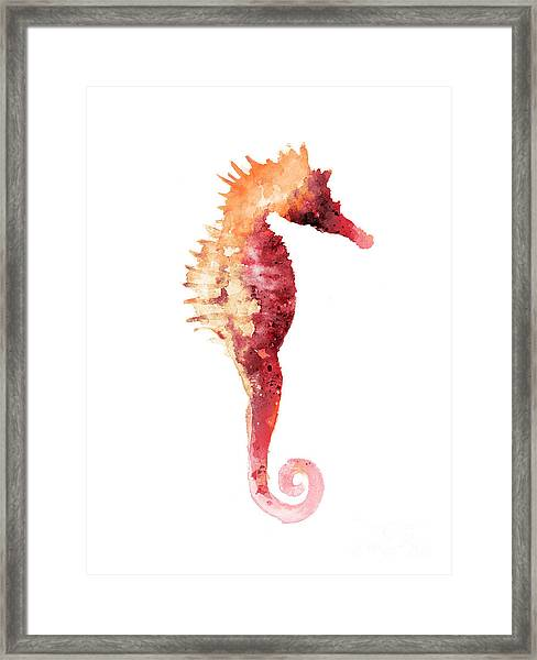 Coral Seahorse Watercolor Painting Framed Print