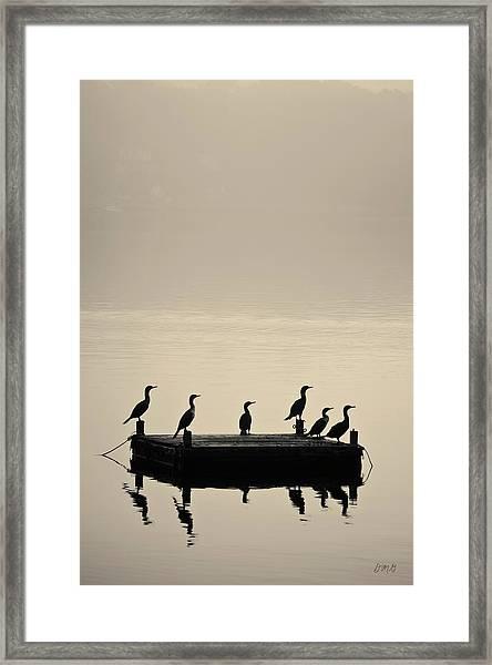 Cormorants And Dock Taunton River No. 2 Framed Print