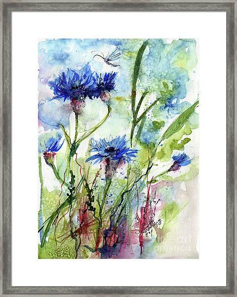 Cornflowers Korn Blumen Watercolor Painting Framed Print