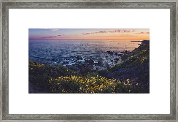 Corona Del Mar Super Bloom Framed Print