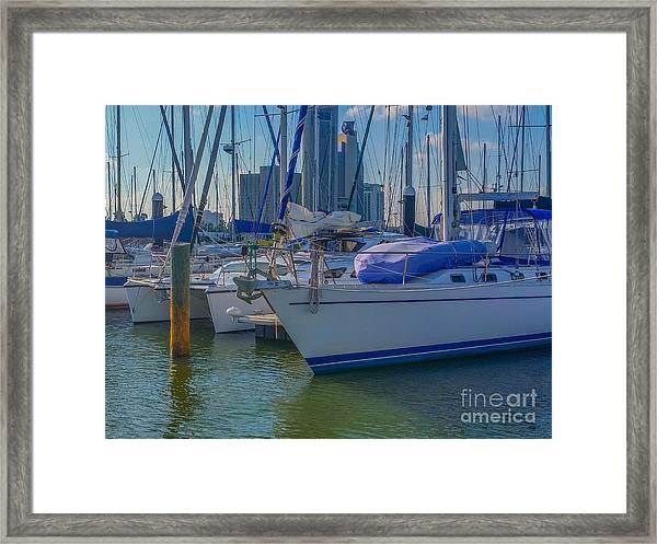 Corpus Christi Marina Framed Print