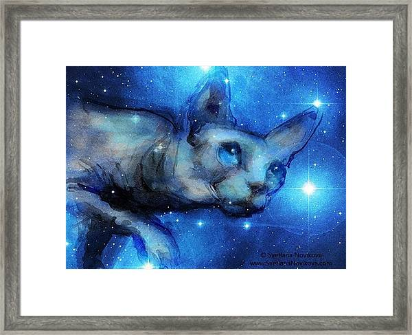 Cosmic Sphynx Painting By Svetlana Framed Print