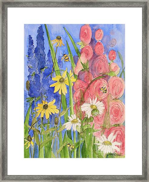 Cottage Garden Daisies And Blue Skies Framed Print
