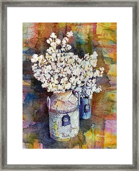Cotton Stalks Framed Print