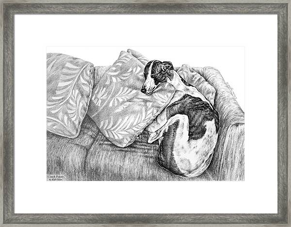 Couch Potato Greyhound Dog Print Framed Print
