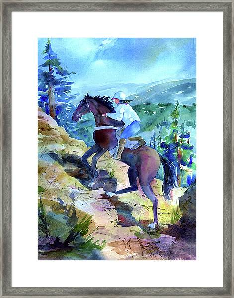 Cougar Rock Framed Print