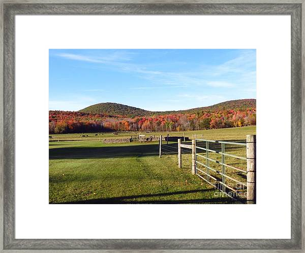 Country Farm And Family Plot Framed Print