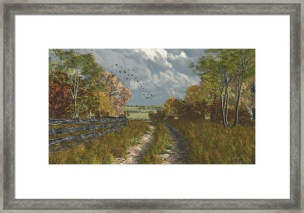 Country Lane In Fall Framed Print