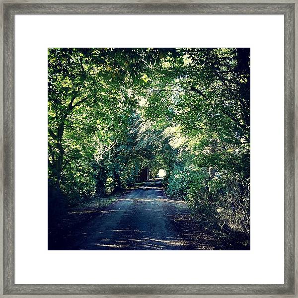 Country Lane, Tree Tunnel Framed Print