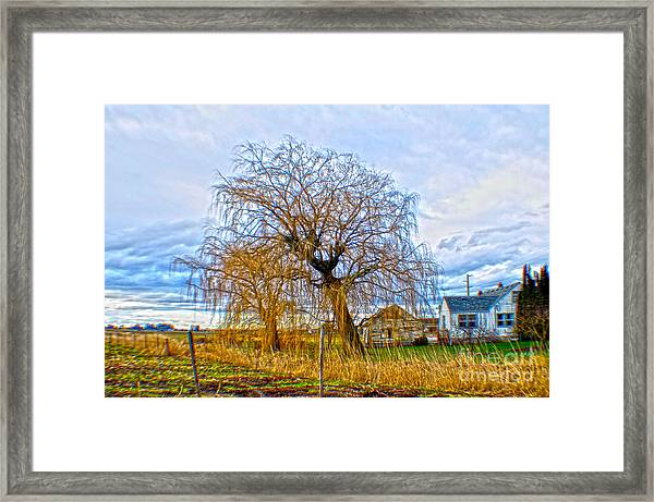 Country Life Artististic Rendering Framed Print