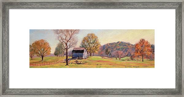 Country Morning Framed Print