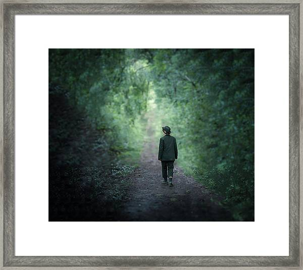 Country Path Framed Print