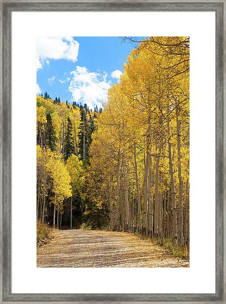 Country Roads Framed Print