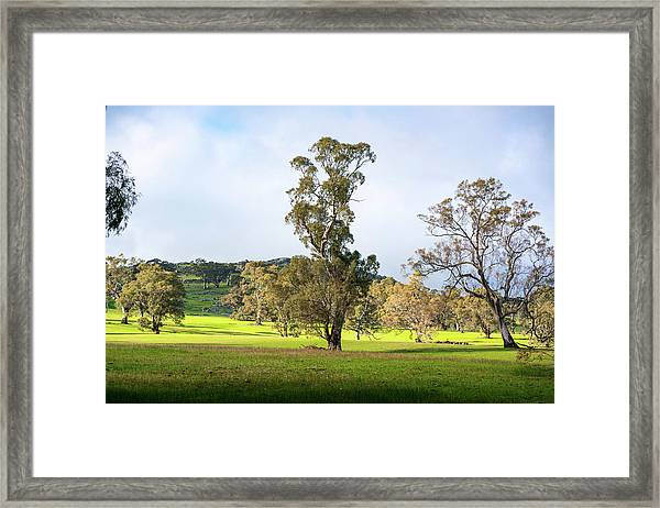 Countryside Victoria Australia Framed Print